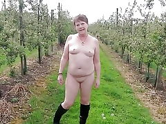 Appetizing Bare Ramble Thru an Apple Orchard